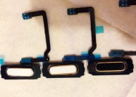 Home Key Button Flex Cable for Samsung Galaxy S5 G900F/G900A/G900T/G900V/G900P (White/Gold)(New)